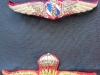 Top is Royal Thai Border Police Jump Wings Bottom is Royal Thai Army Jump Wings