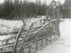 Alaska Me dog sled Airborne Test Platoon 1954